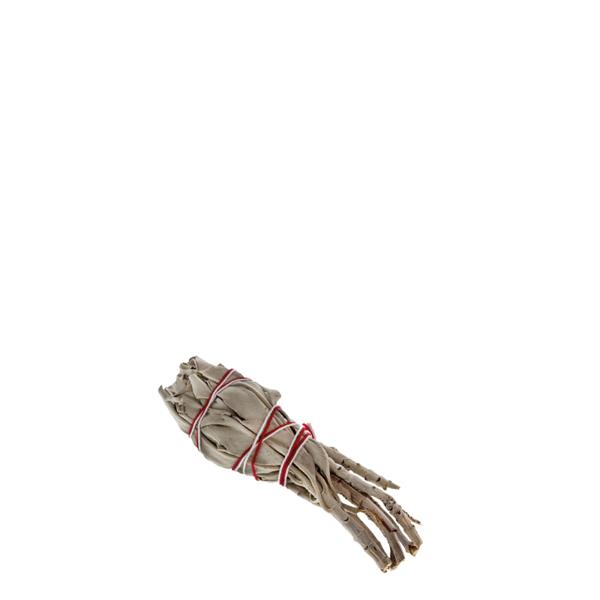 Bild von Indianherbs Salbeibündel weiss klein